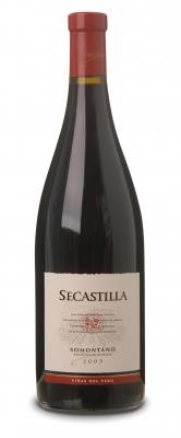 Secastilla 2007