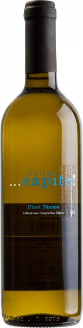 Folino Capito Pinot Bianco IGT 2015