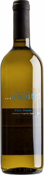 Folino Capito Pinot Bianco IGT 2016